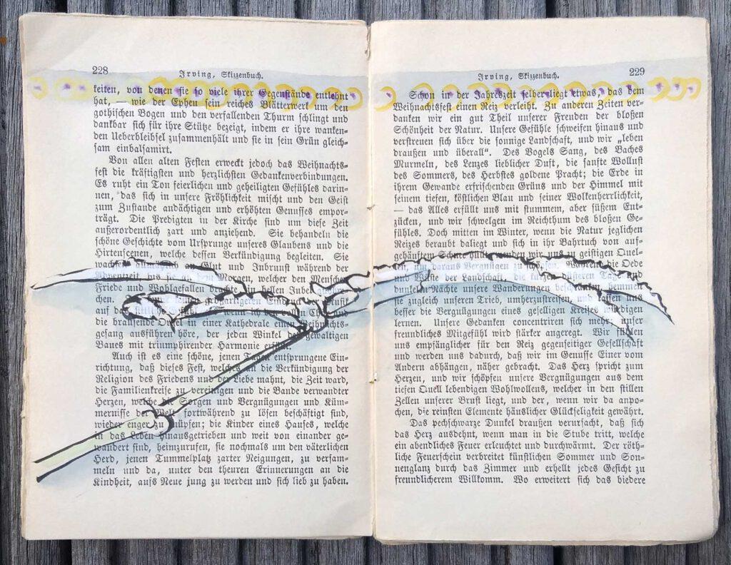 Zeichnung des Blattes einer Brombeere mit Tusche und Wasserfarben auf zwei aufgeschlagenen Seiten in Reiseskizzenbuch von Washington Irving Ende des 19. Jahrhunderts